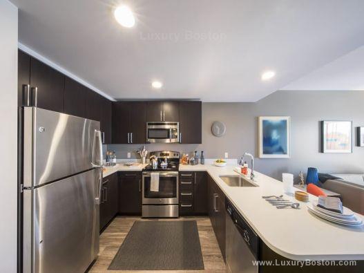 Luxury Boston Zinc Apartments Cambridge Boston Condos